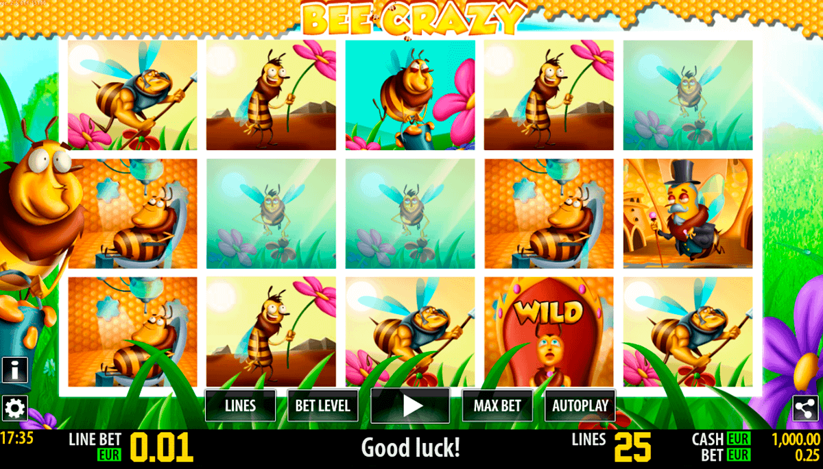 bee crazy hd world match spielautomaten