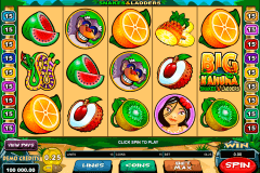 big kahuna snakes and ladders microgaming spielautomaten