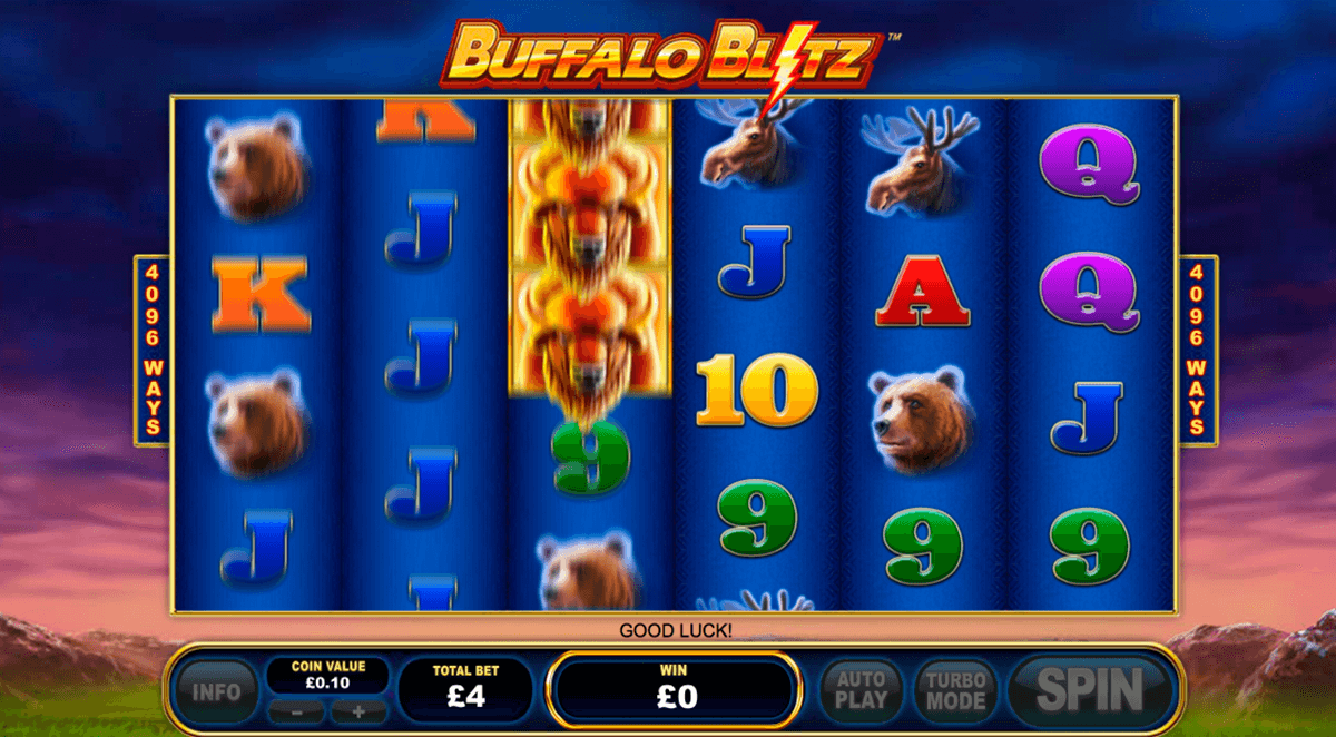 buffalo blitz playtech spielautomaten