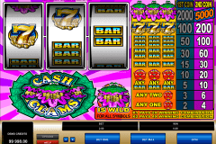 cash clams microgaming spielautomaten