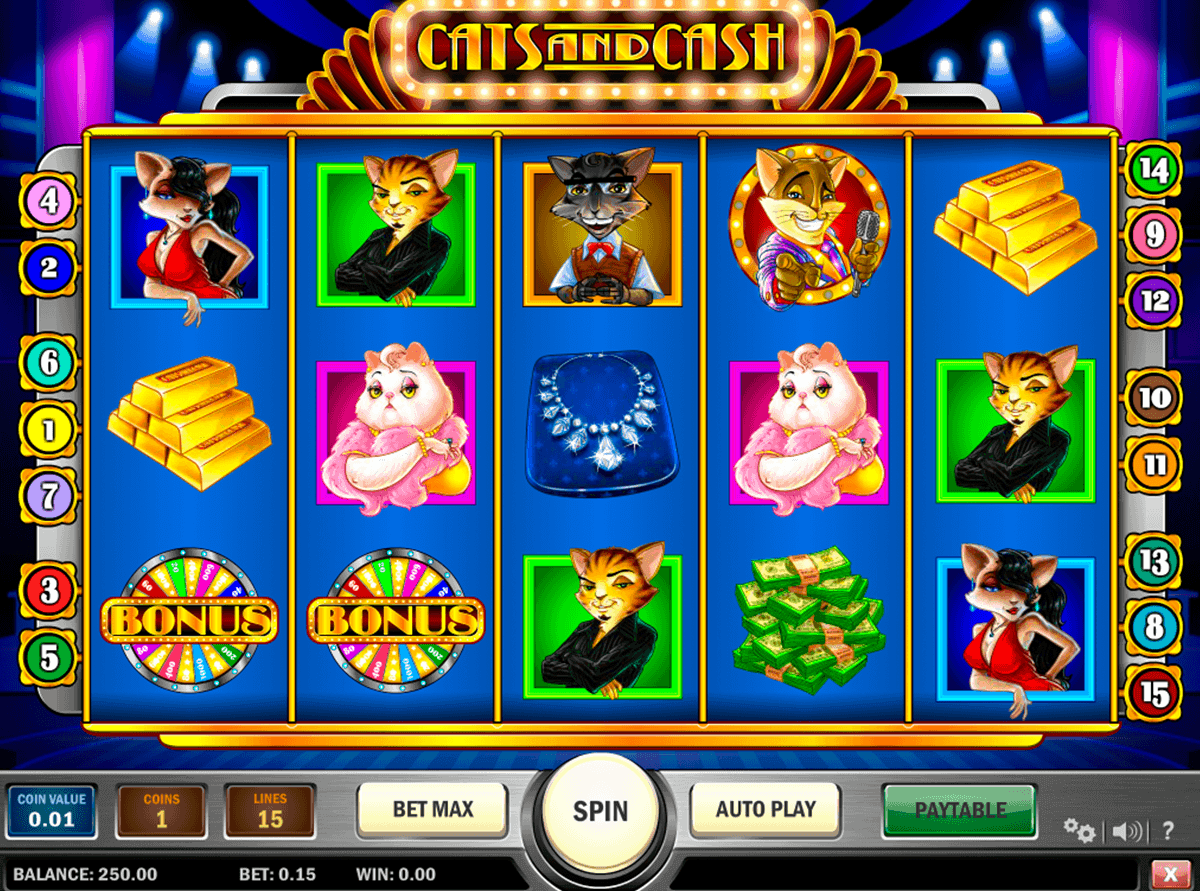 cats and cash playn go spielautomaten