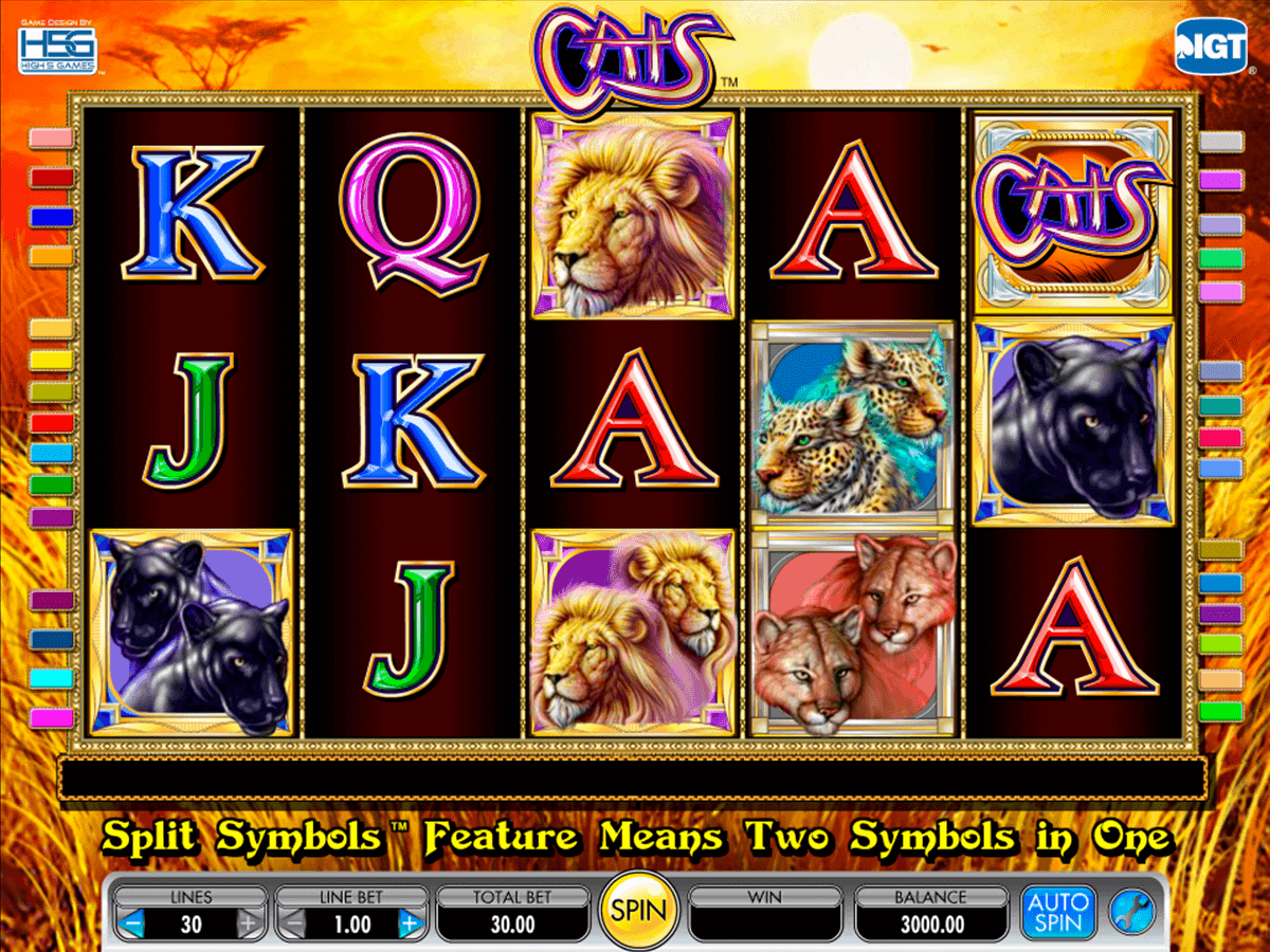 Spiele Exotic Cats - Video Slots Online