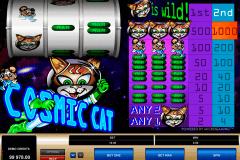 cosmic cat microgaming spielautomaten