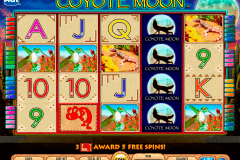 coyote moon igt spielautomaten