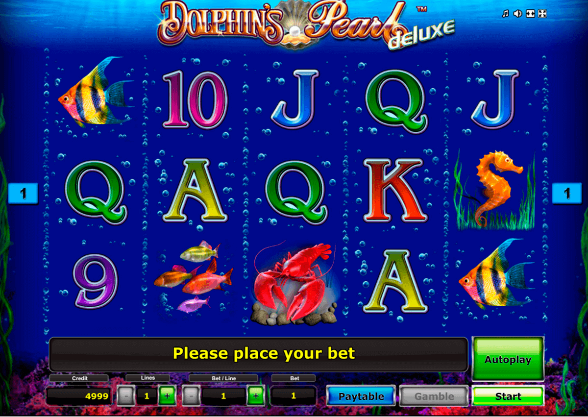 dolphin spiele download