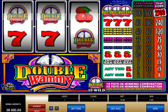 double wammy microgaming spielautomaten