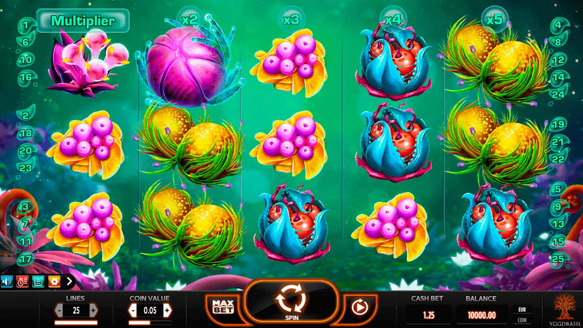 online casino ohne bonus fruit casino