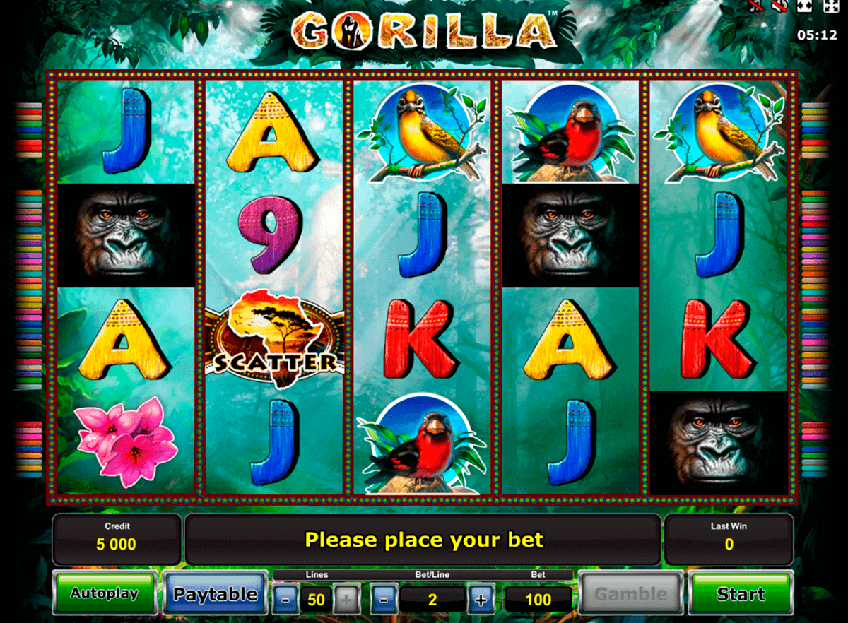 gorilla novomatic spielautomaten