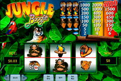 jungle boogie playtech spielautomaten