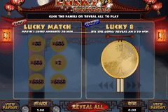 lucky numbers microgaming rubbellose