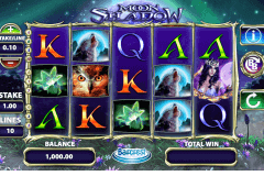 free slot play online online spiele book of ra