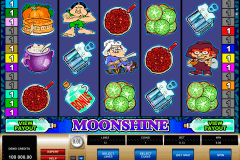 moonshine microgaming spielautomaten