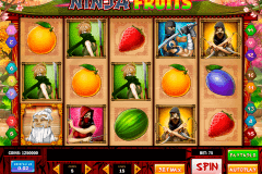ninja fruits playn go spielautomaten