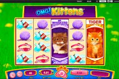 omg kittens wms spielautomaten