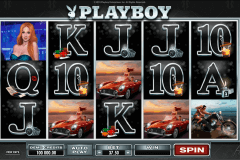 playboy microgaming spielautomaten