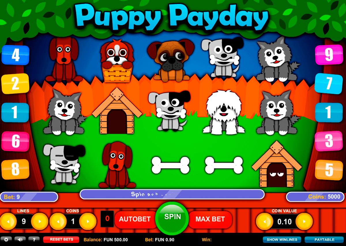 puppy payday 1x2gaming spielautomaten