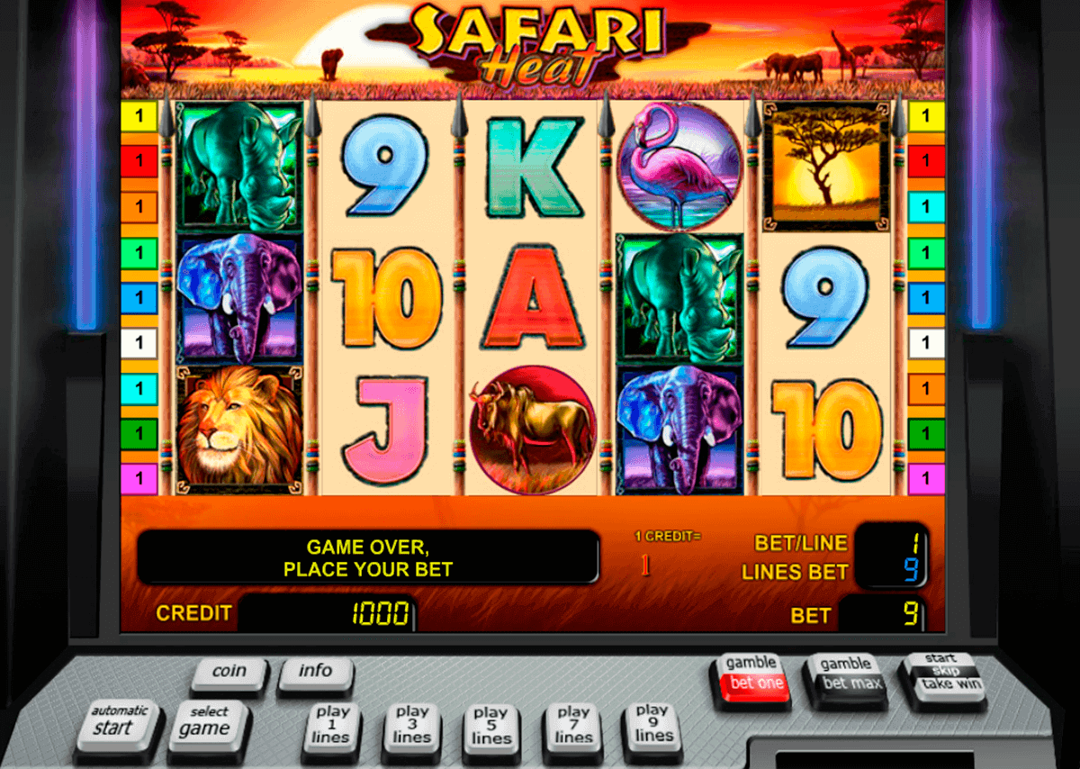 safari heat novomatic spielautomaten