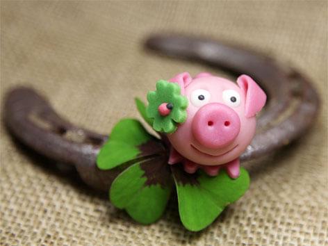 schwein glücksymbol
