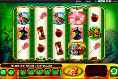 the wizard of oz ruby slippers wms spielautomaten