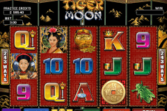 tiger moon microgaming spielautomaten