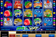 what a hoot microgaming spielautomaten