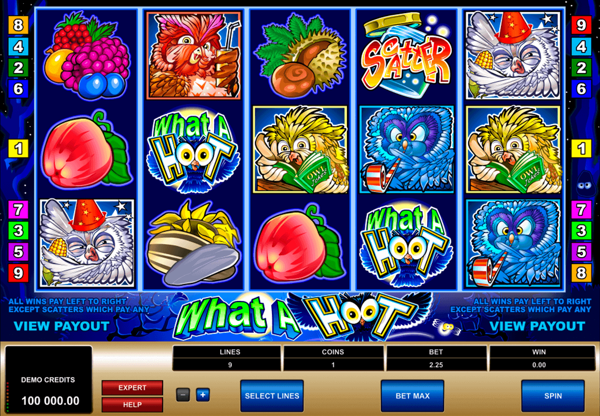 online casino reviewer casino gratis spielen