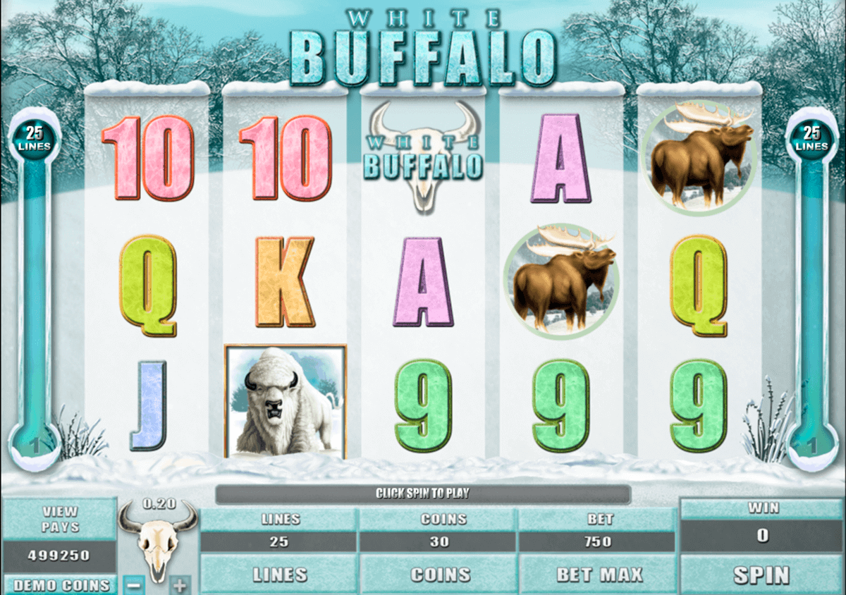white buffalo microgaming spielautomaten