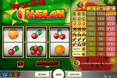 wild melon playn go spielautomaten