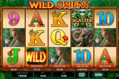wild orient microgaming spielautomaten