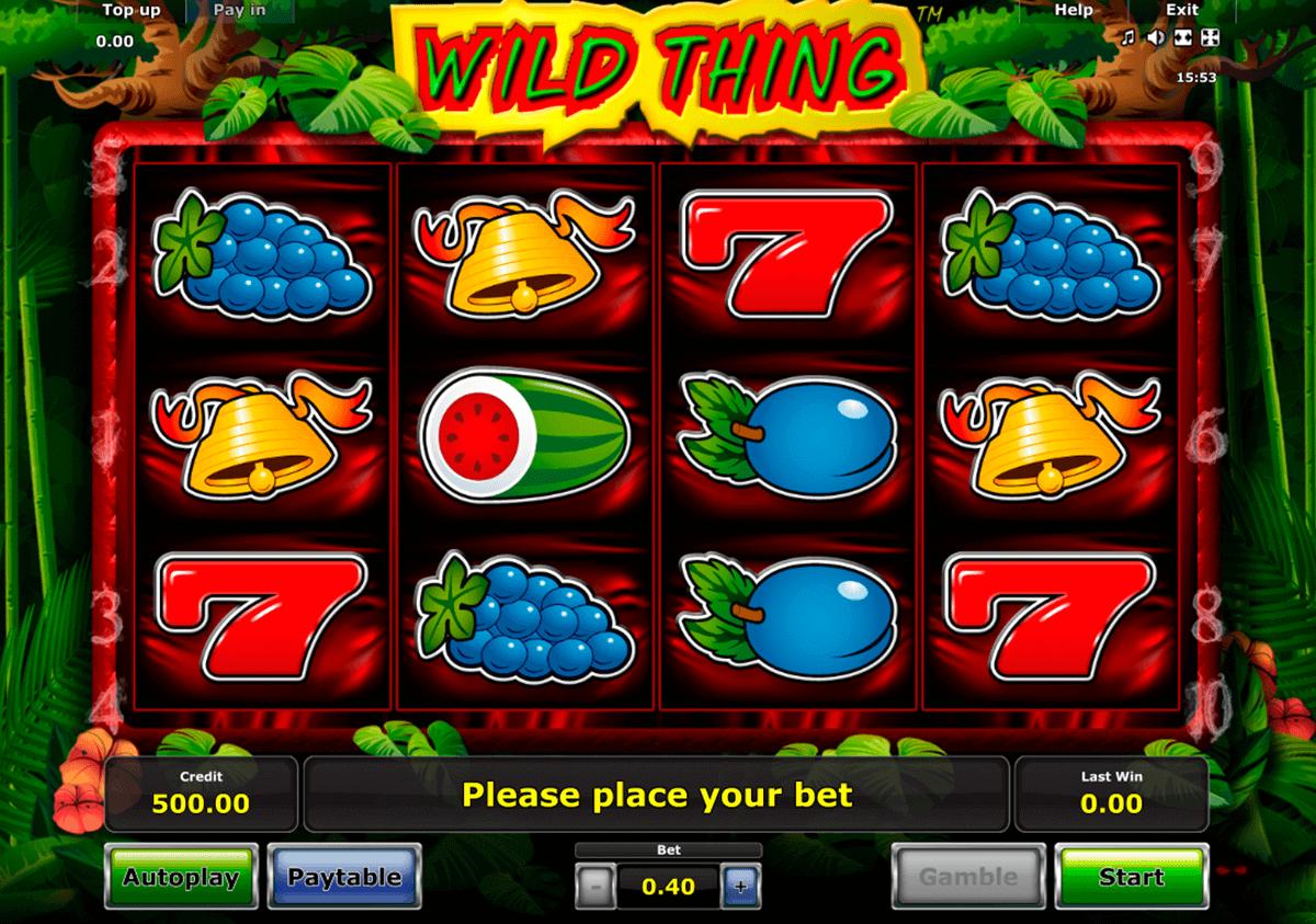 wild thing novomatic spielautomaten