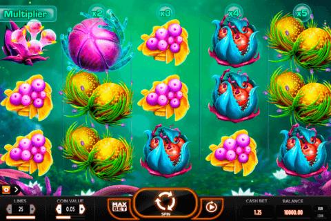 fruitoids yggdrasil