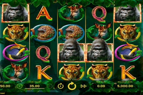 gorilla kingdom netent