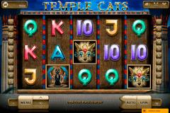 temple cats endorphinam