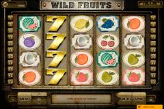 wildfruits endorphinam